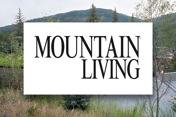 A Midcentury-Modern Mountain Getaway